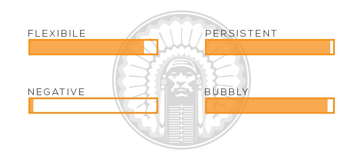 vanessa-personality-graphic