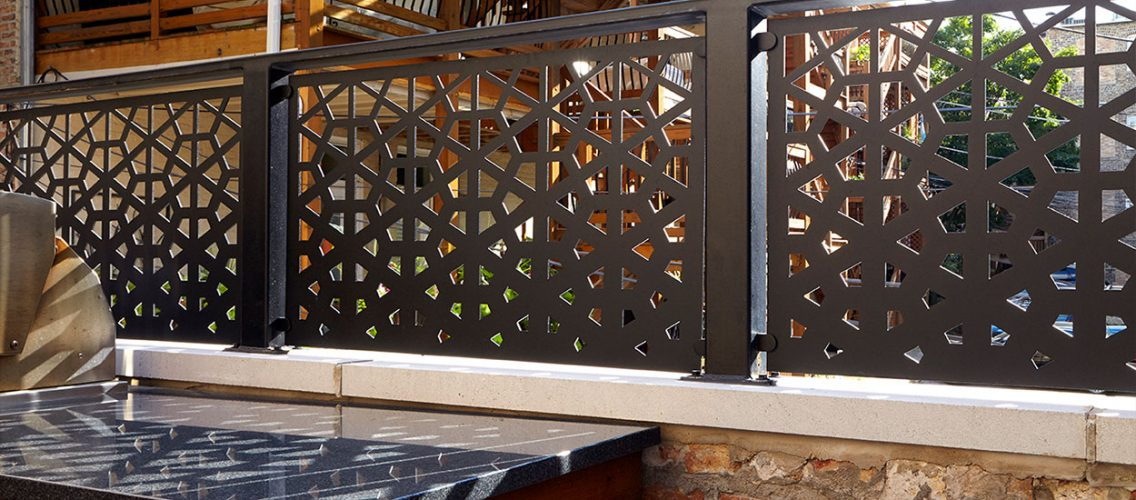 Restored-Lincoln-Park-Home-Garage-Roof-deck-#4