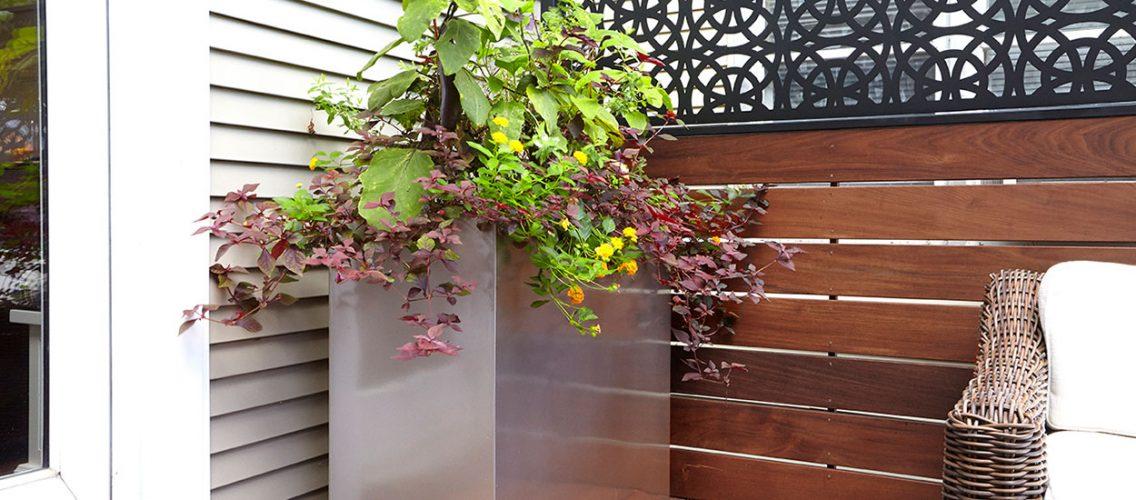 Tropical_Hardwood_Terrace-4